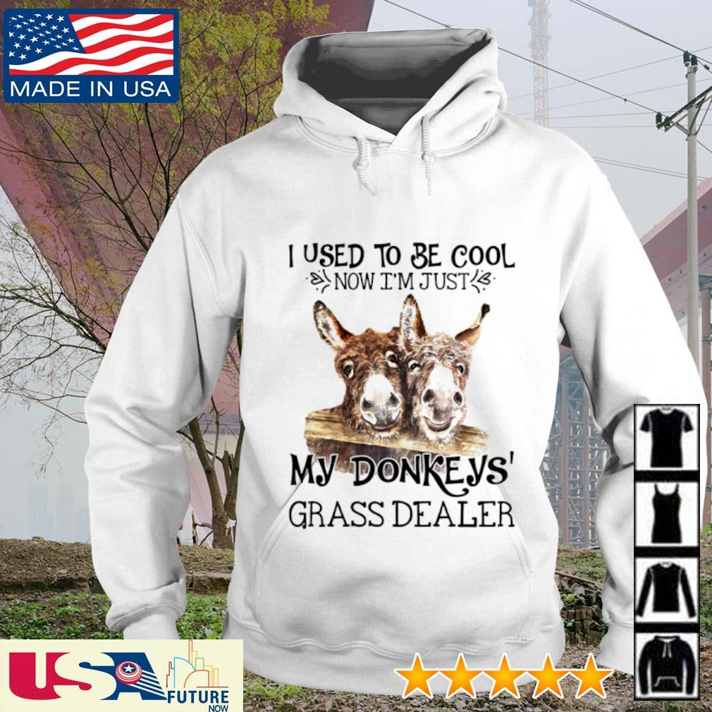 I used to be cool now I'm just my Donkey's grass dealer hoodie